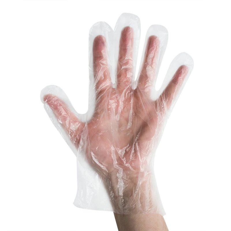 Food Service Gloves (Box of 500)